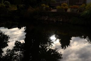 MISC SEPT 2013 - REFLECTIONS (10)