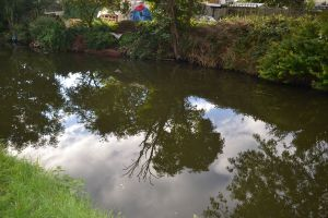 MISC SEPT 2013 - REFLECTIONS (65)