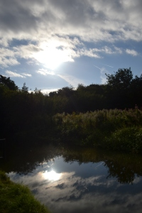 MISC SEPT 2013 - REFLECTIONS (75)