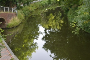 MISC SEPT 2013 - REFLECTIONS (88)